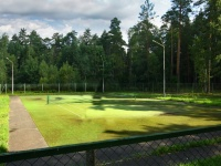 гостиничный комплекс Каменюки - Теннисный корт