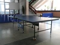 гостиница ГОЦОР по игровым видам спорта - Теннис настольный