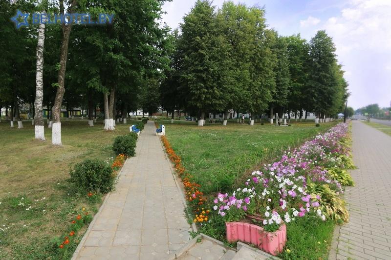 Гостиницы Белоруссии Беларуси - гостиница Дрибин - Окрестные пейзажи