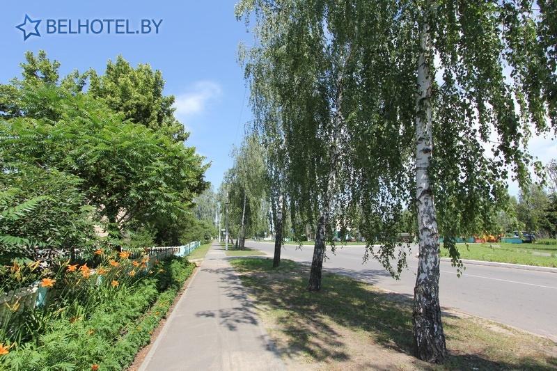 Гостиницы Белоруссии Беларуси - гостиница Днепр - Окрестные пейзажи