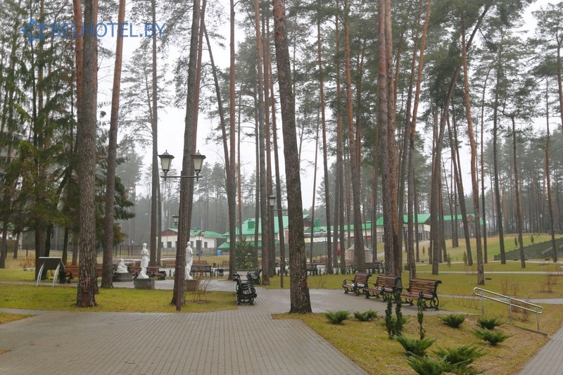 Hotels in Belarus - hotel complex Forum Minsk - Scenery of the locality