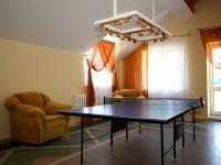 гостиничный комплекс Дривяты - Теннис настольный